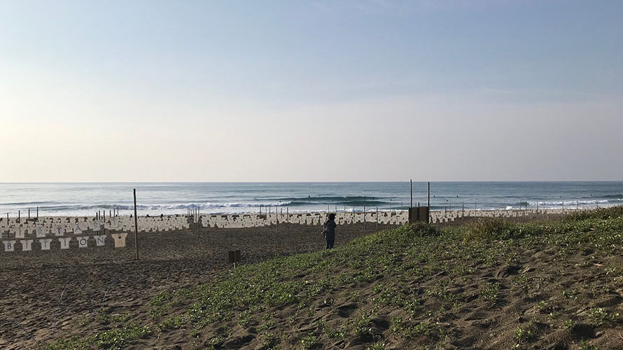 【Surf Day!! 5.07】
