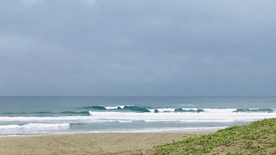 【Surf Day!! 5.28】