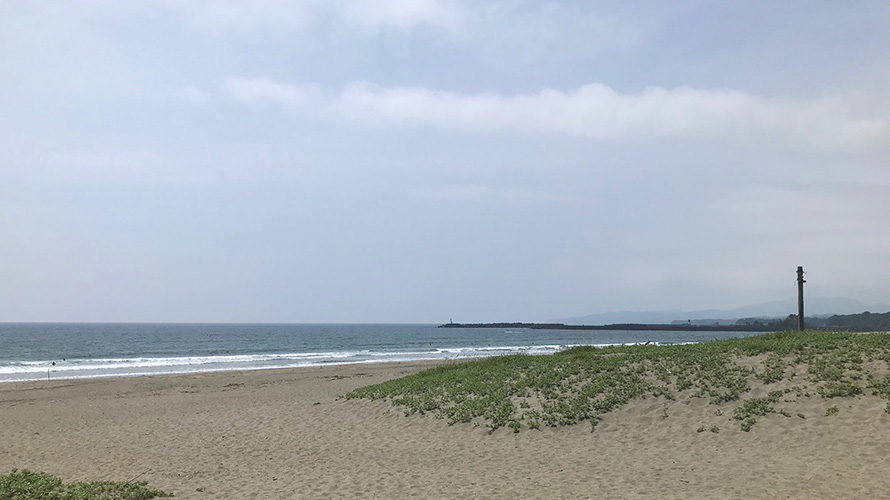 【Surf Day!! 6.25】