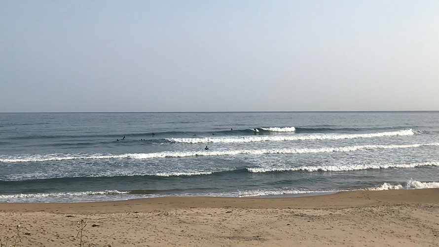 【Surf Day!! 3.26】